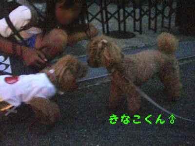 2009年08月25日_CIMG0041