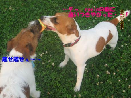090_convert_20090710235701[1]