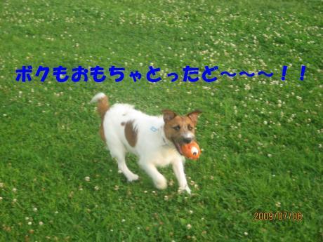 053_convert_20090710235837[1]