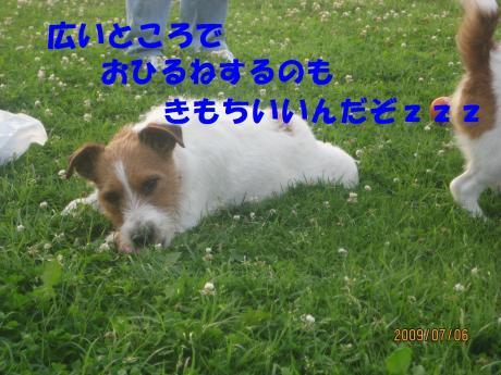 041_convert_20090711000533[1]