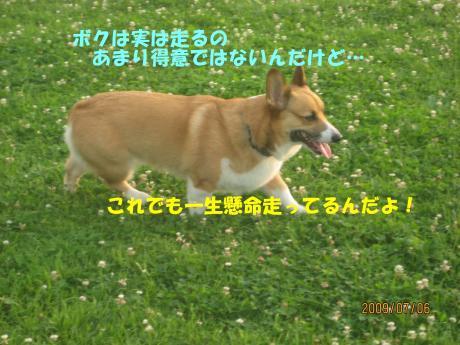 077_convert_20090711002133[1]