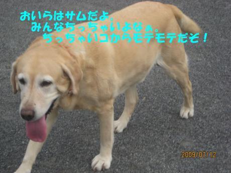 025_convert_20090717000318[1]