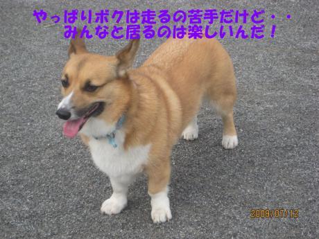 064_convert_20090717001912[1]