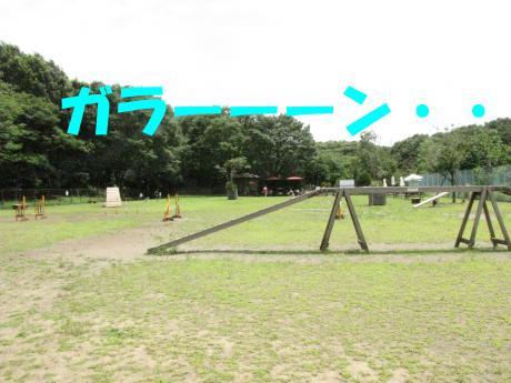 054_convert_20090723231814[1]