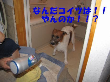 070_convert_20090809194031[1]