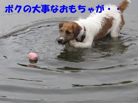 16_convert_20090830202241[1]