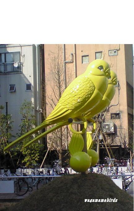 黄色い鳥2
