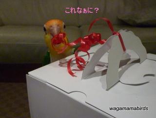 wagamamab608001.jpg