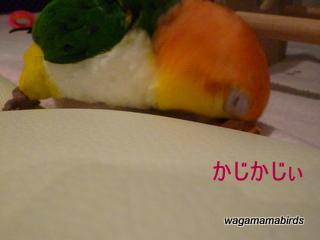 wagamamab615003.jpg