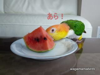 wagamamab624102.jpg