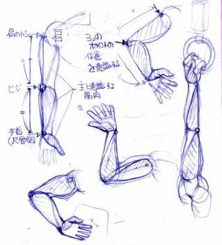 腕の描き方