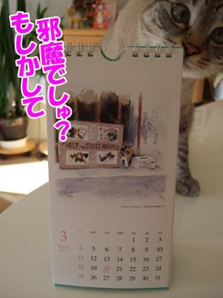 DSCF2262.jpg