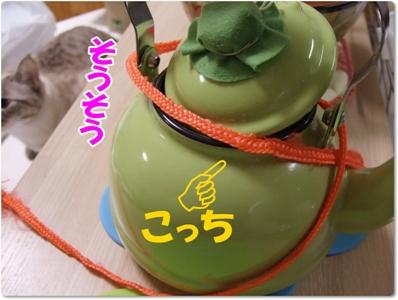 DSCF2568.jpg