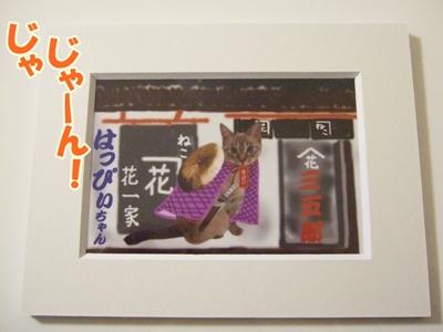 hanaitiza1.jpg