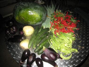 今日の収穫 キュウリ、茄子 ...