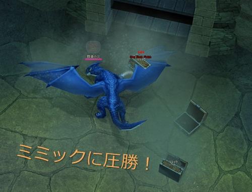 ウィンドミル ペットダンジョンイベント ドラゴン 10