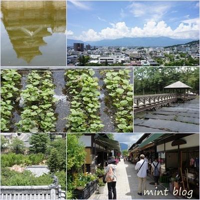 page_20110816135034.jpg