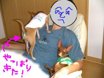 snap_yamatoss_20098416725.jpg