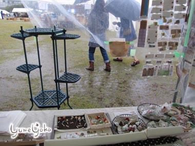 2011春ロハス 雨