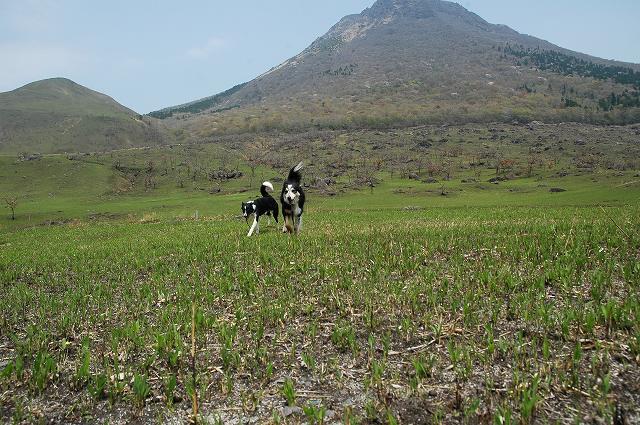 11-2011_0505-20073.jpg