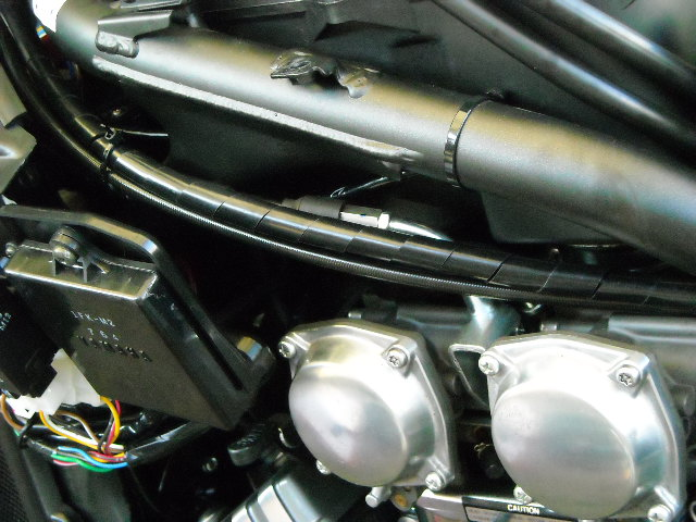 HB-1-1.jpg