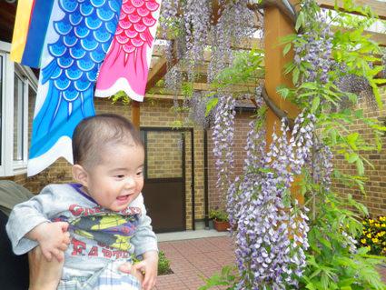 fujiIMGP1368.jpg