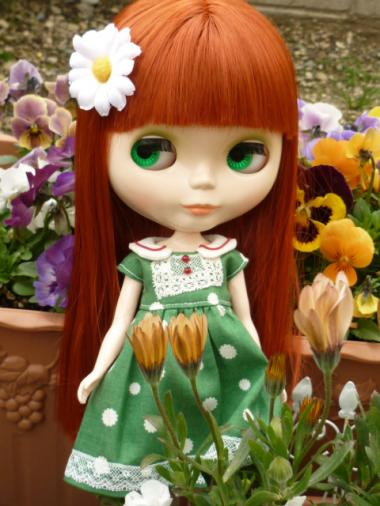お花いっぱい・・といきたいとこだけど、