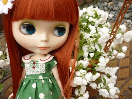 まだまだ寒くてスカスカの庭です。