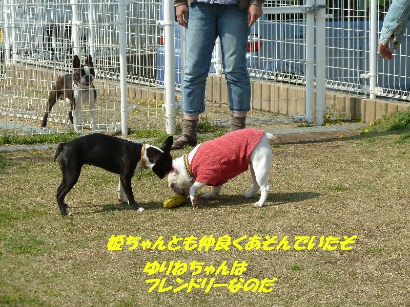 14_20110427175829.jpg