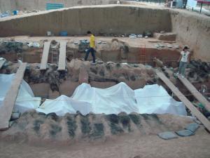 発掘中の場所