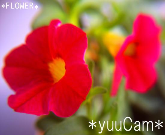 20117090194end_convert_20110711210442.jpg