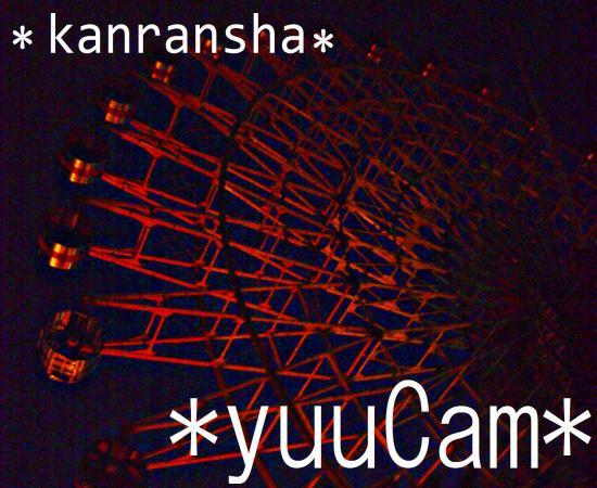 20117130206_convert_20110717075403.jpg