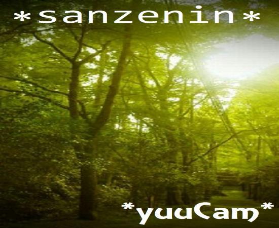 2011729sanzenin_convert_20110731224027.jpg