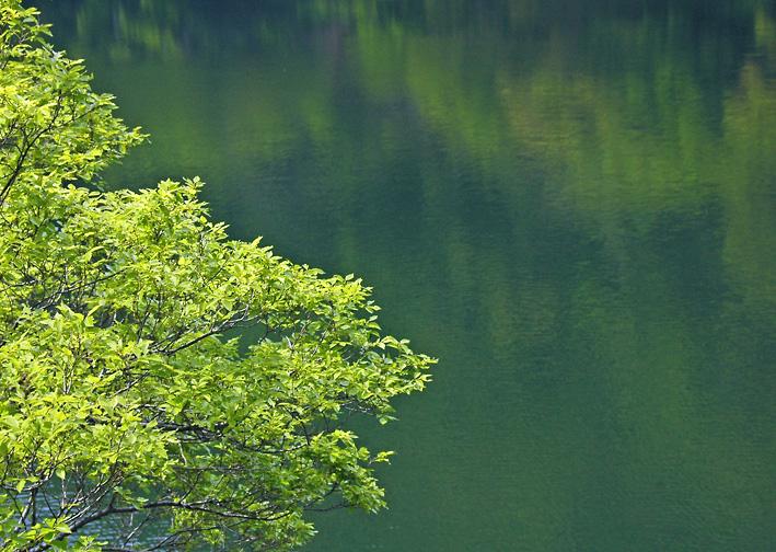 DSC_天ヶ瀬ダム湖03