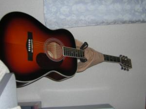 普段のギター
