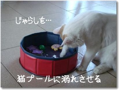 broken toy4