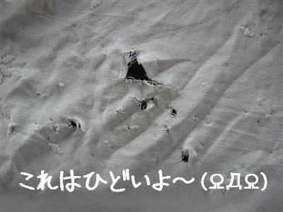 bakachin1.jpg