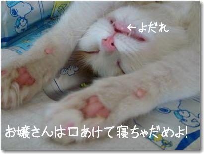 bakusui1.jpg