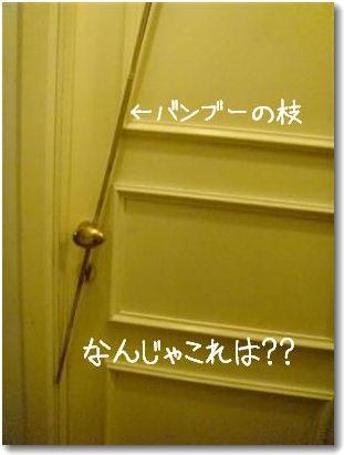 door_20090621003904.jpg