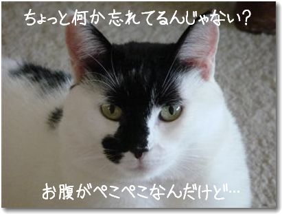 harapeko.jpg
