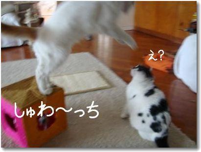 jump1-_20090622005847.jpg