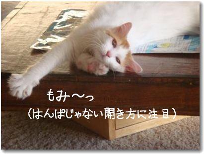 momimomi2.jpg