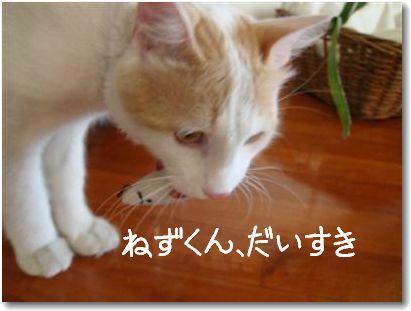 nezu-kun.jpg