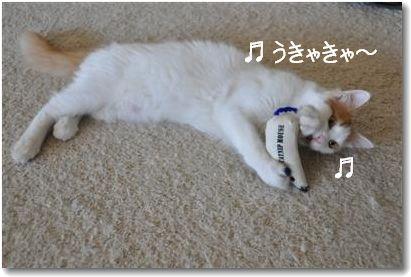 nezu-kun_20090910195400.jpg