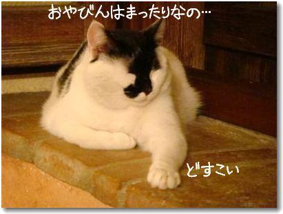 oyabin_20090829170122.jpg