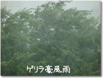 rain1_20090703055053.jpg