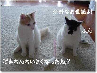seikurabe3-.jpg