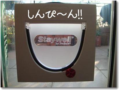 staywell2.jpg