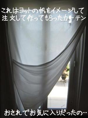 tenda1.jpg