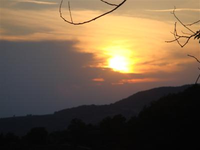 tramontino.jpg